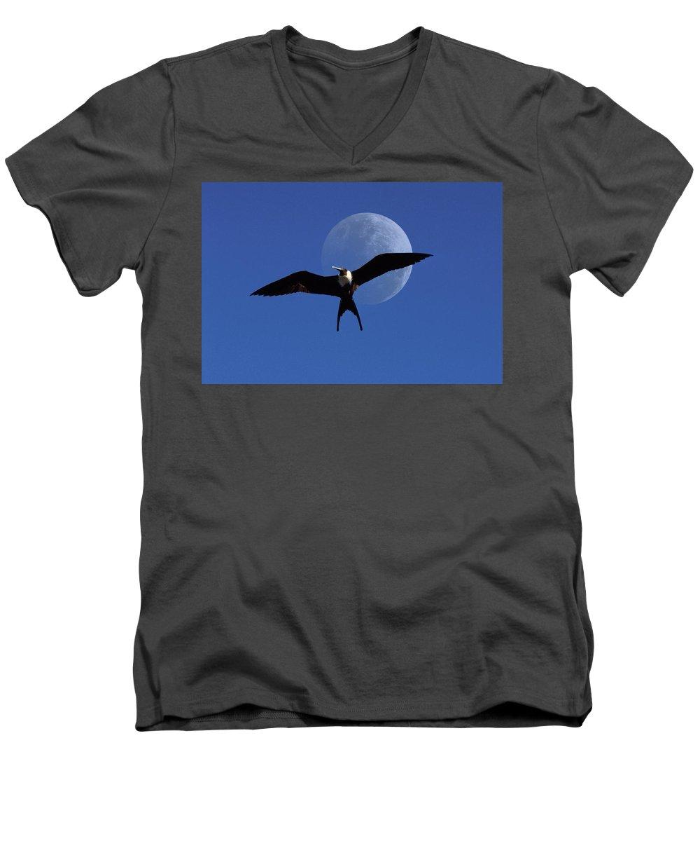Frigate Men's V-Neck T-Shirt featuring the photograph Frigatebird Moon by Jerry McElroy