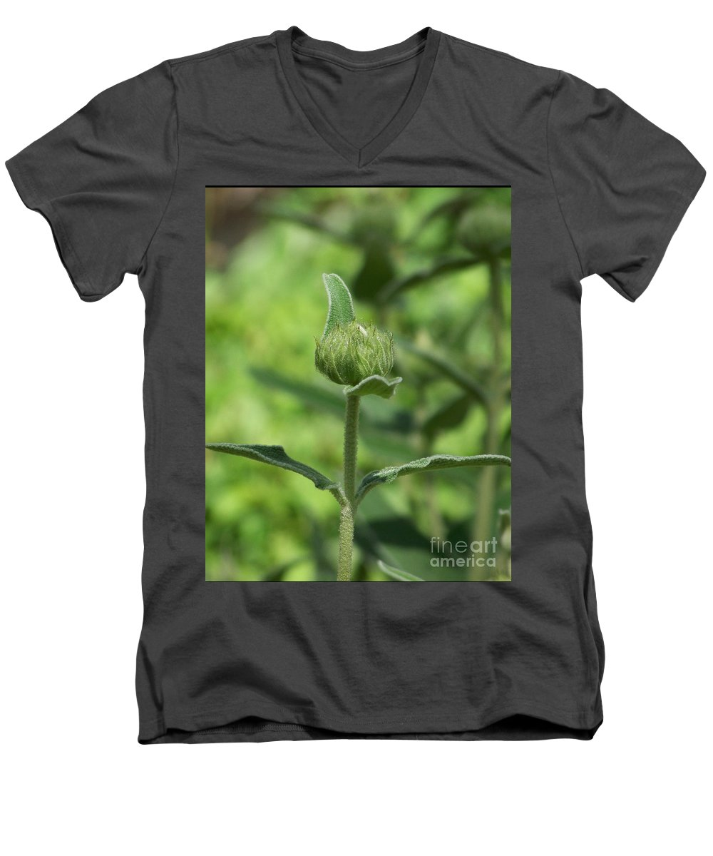 Plants Men's V-Neck T-Shirt featuring the photograph Its A Green World by Kathy McClure