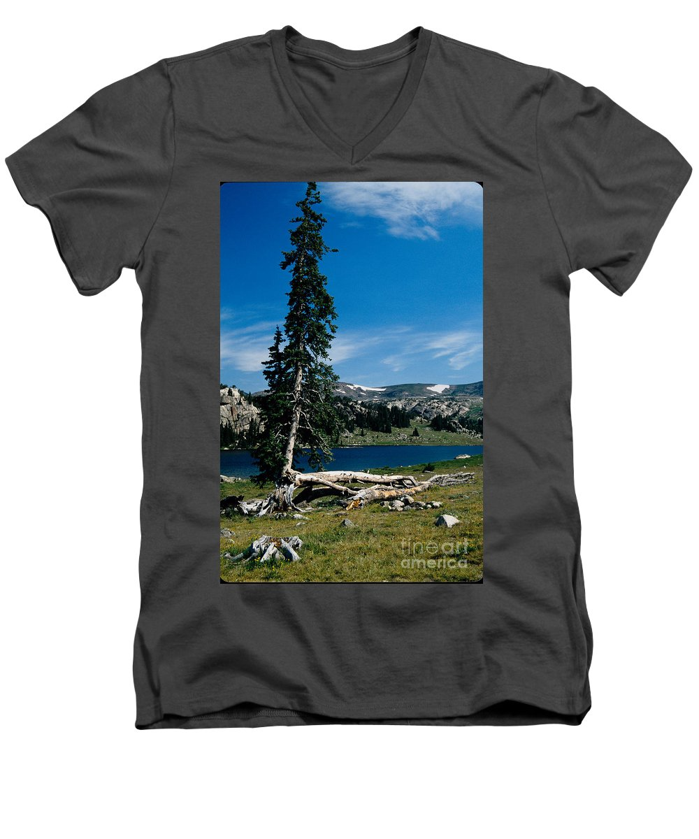 Mountains Men's V-Neck T-Shirt featuring the photograph Lone Tree At Pass by Kathy McClure