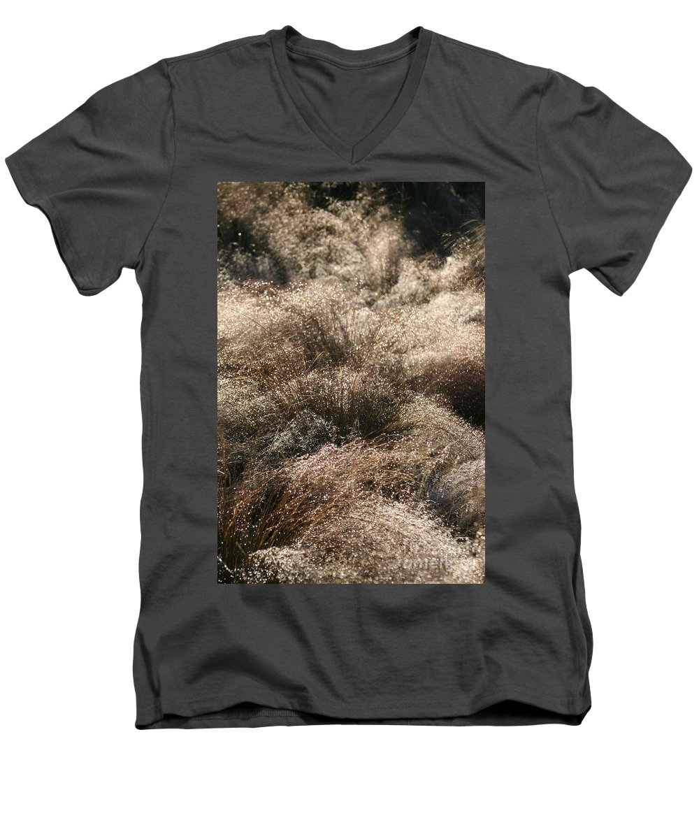 Grasses Men's V-Neck T-Shirt featuring the photograph Sparkling Grasses by Nadine Rippelmeyer