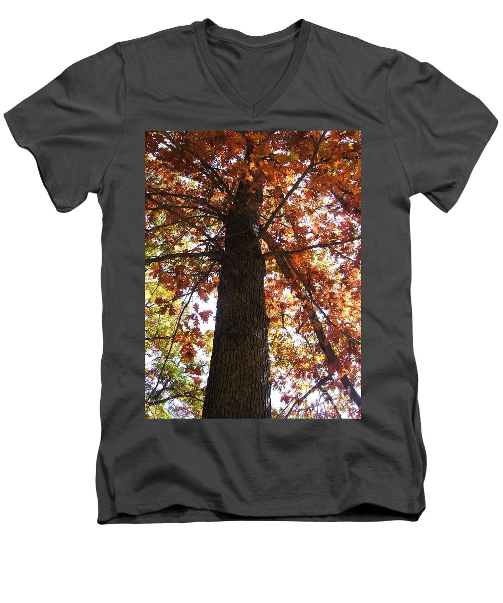 Tree Men's V-Neck T-Shirt featuring the photograph Up Fall by Minding My Visions by Adri and Ray