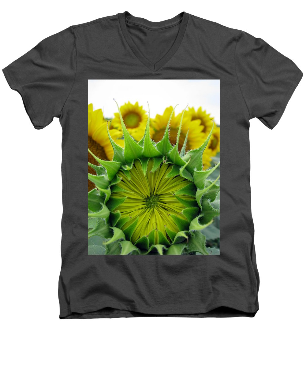 Sunflwoers Men's V-Neck T-Shirt featuring the photograph Sunflower Series by Amanda Barcon