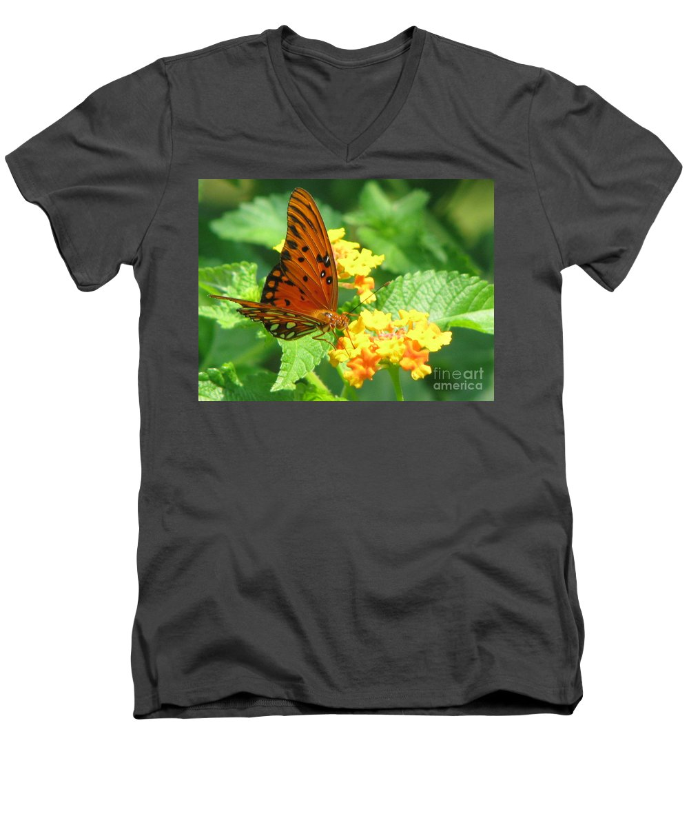 Butterfly Men's V-Neck T-Shirt featuring the photograph Butterfly by Amanda Barcon