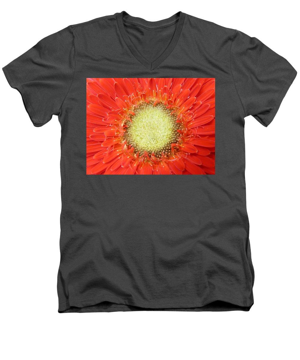 Gerbera Men's V-Neck T-Shirt featuring the photograph Gerbera by Daniel Csoka
