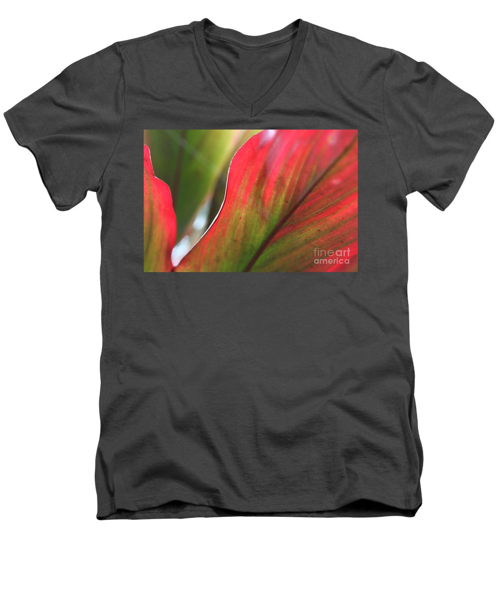 Pink Men's V-Neck T-Shirt featuring the photograph Abstract Leaves by Nadine Rippelmeyer