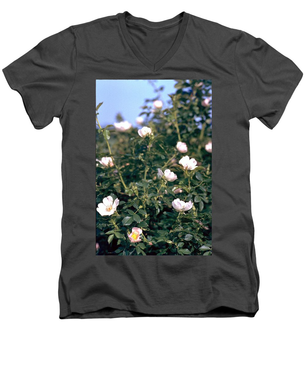 Anemone Men's V-Neck T-Shirt featuring the photograph Anemone by Flavia Westerwelle