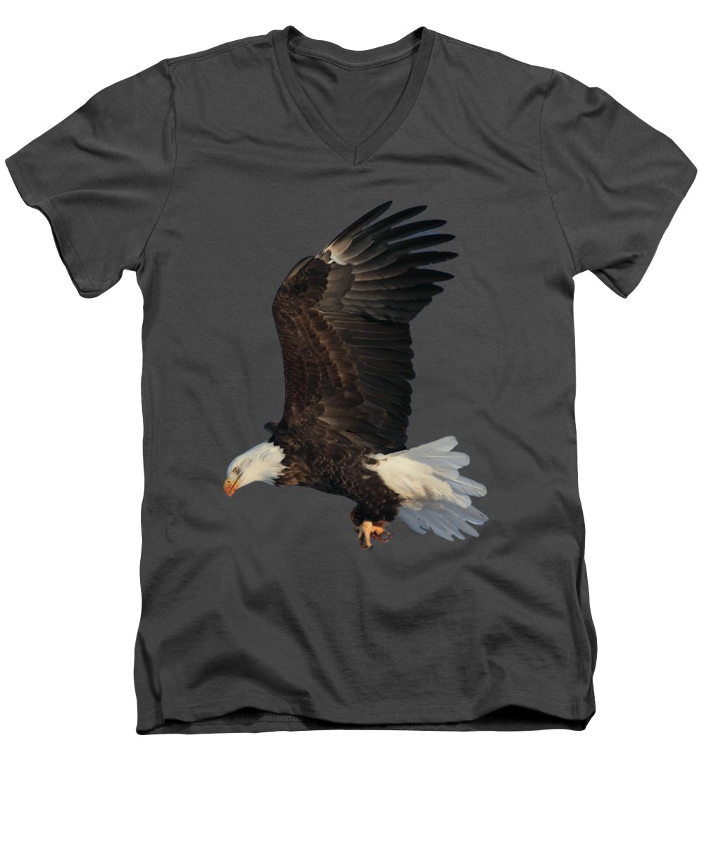 Bald Eagle Men's V-Neck T-Shirt featuring the photograph Fly By by Shane Bechler