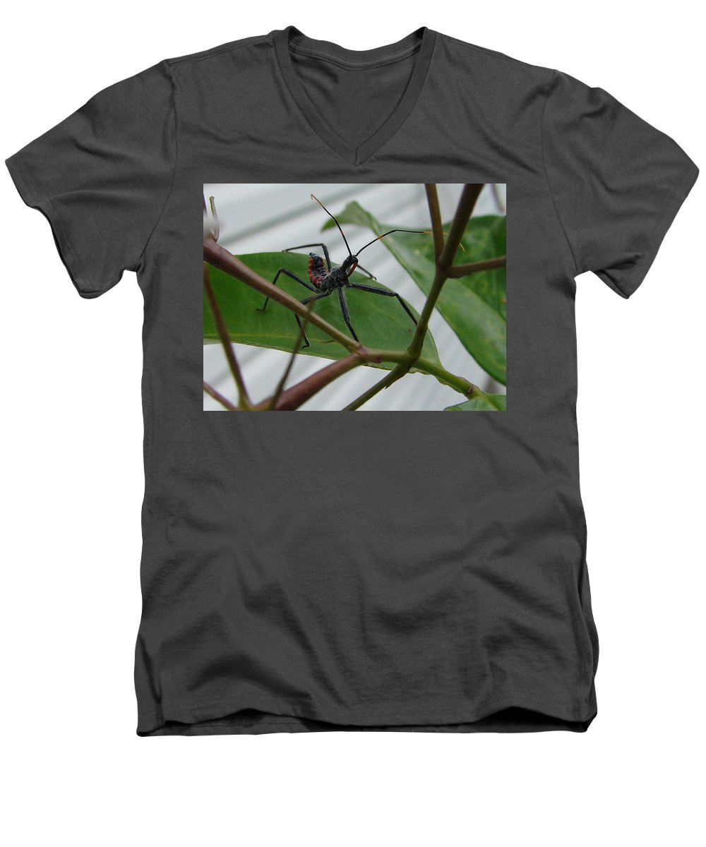 Insect Red Black Green Leaf Men's V-Neck T-Shirt featuring the photograph Assassin Bug by Luciana Seymour
