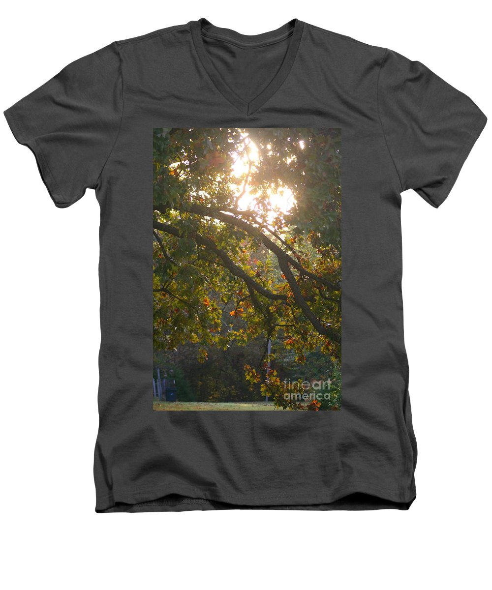 Autumn Men's V-Neck T-Shirt featuring the photograph Autumn Morning Glow by Nadine Rippelmeyer