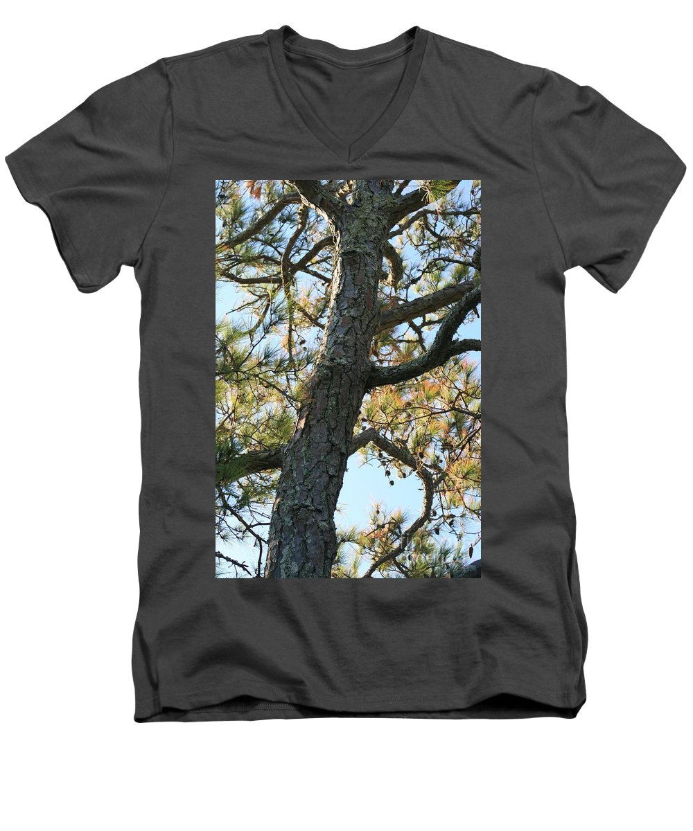 Tree Men's V-Neck T-Shirt featuring the photograph Bald Head Tree by Nadine Rippelmeyer