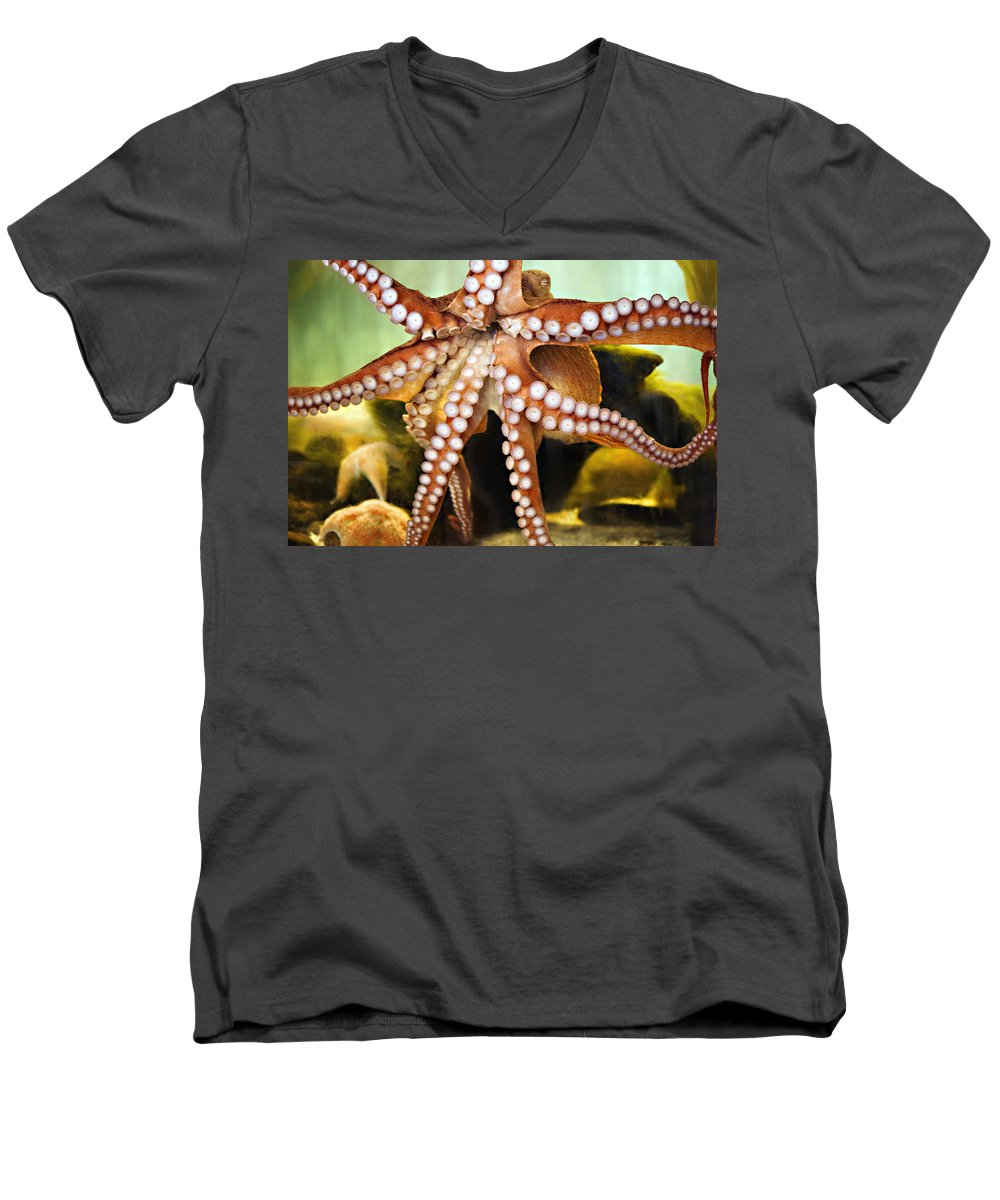 Octopus Men's V-Neck T-Shirt featuring the photograph Beautiful Octopus by Marilyn Hunt