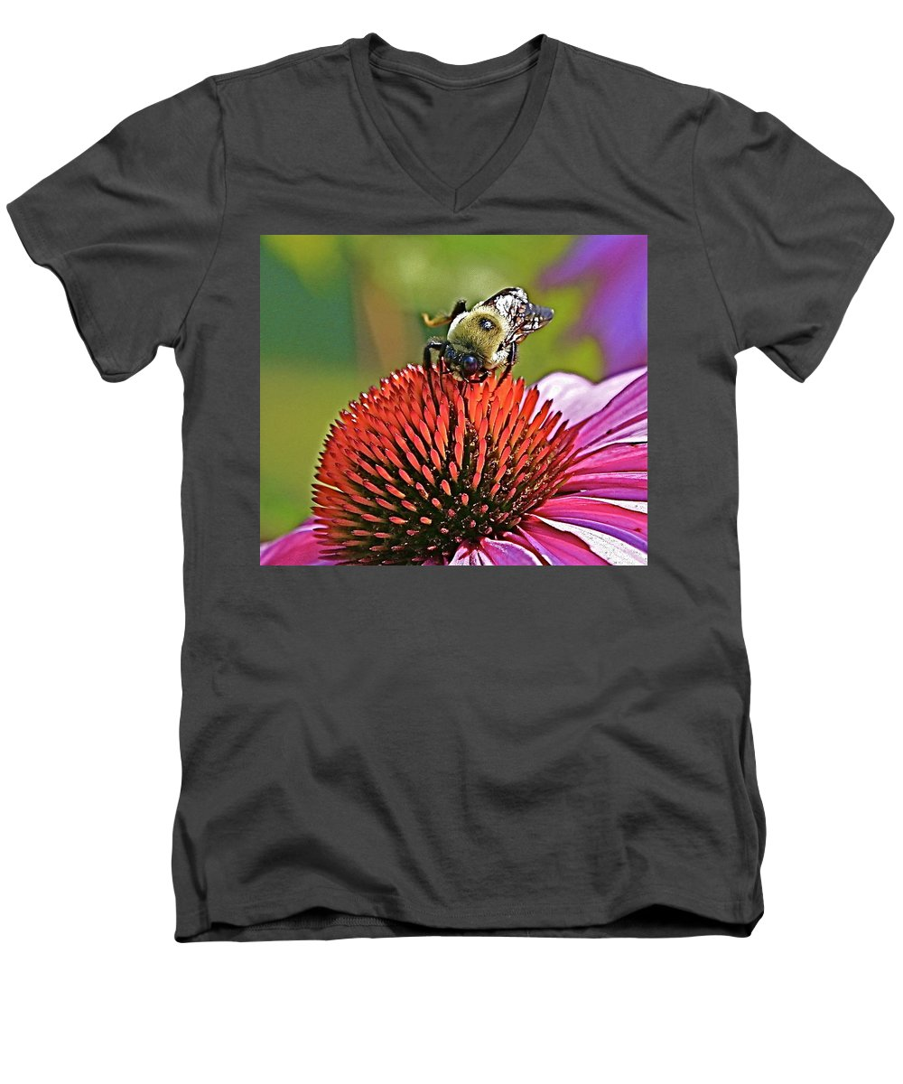 Bee Men's V-Neck T-Shirt featuring the photograph Beware by Robert Pearson