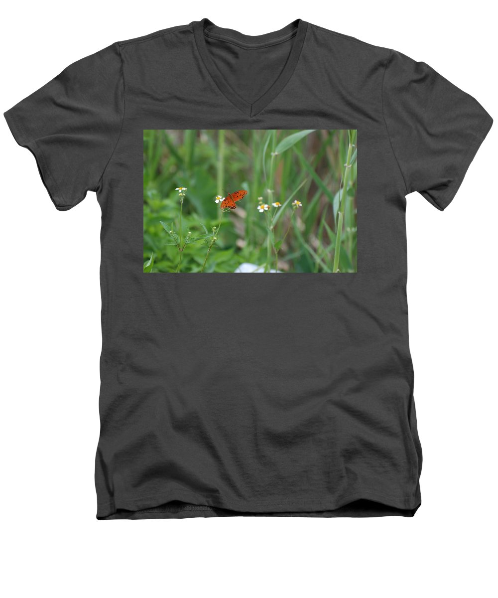 Butterfly Men's V-Neck T-Shirt featuring the photograph Broken Wing by Rob Hans