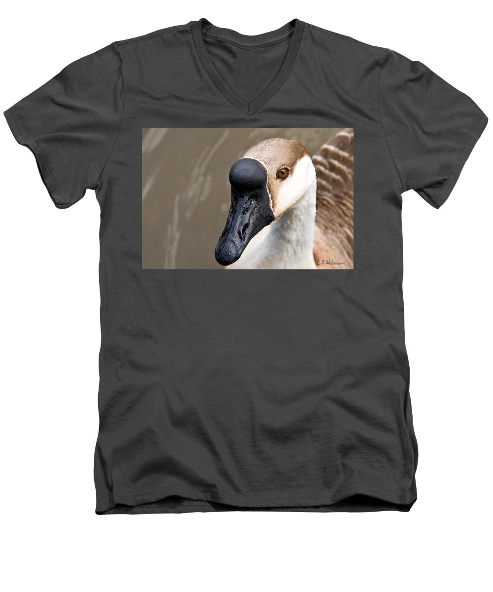 Chinese Brown Goose Men's V-Neck T-Shirt featuring the photograph Brown Eye by Christopher Holmes