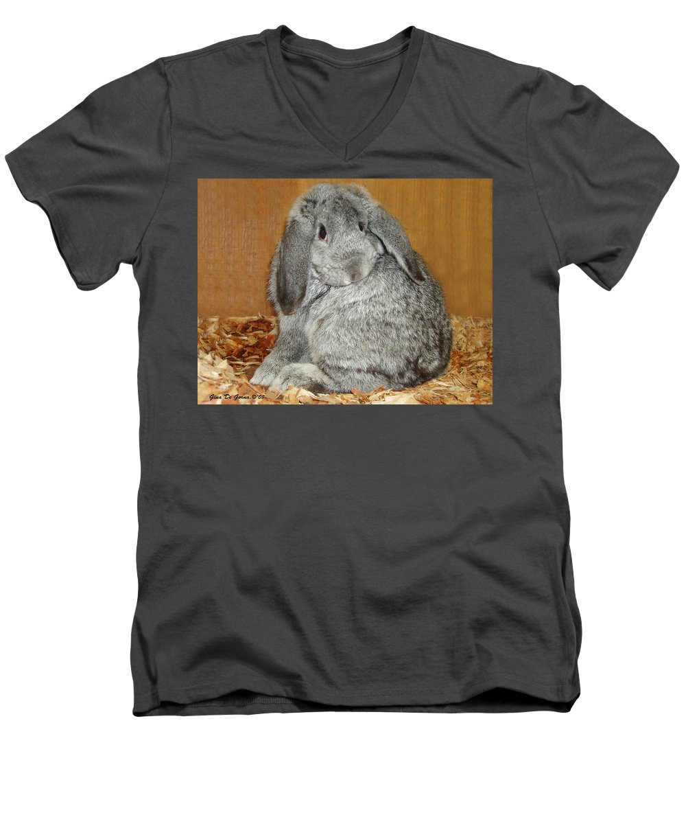 Bunny Men's V-Neck T-Shirt featuring the photograph Bunny by Gina De Gorna