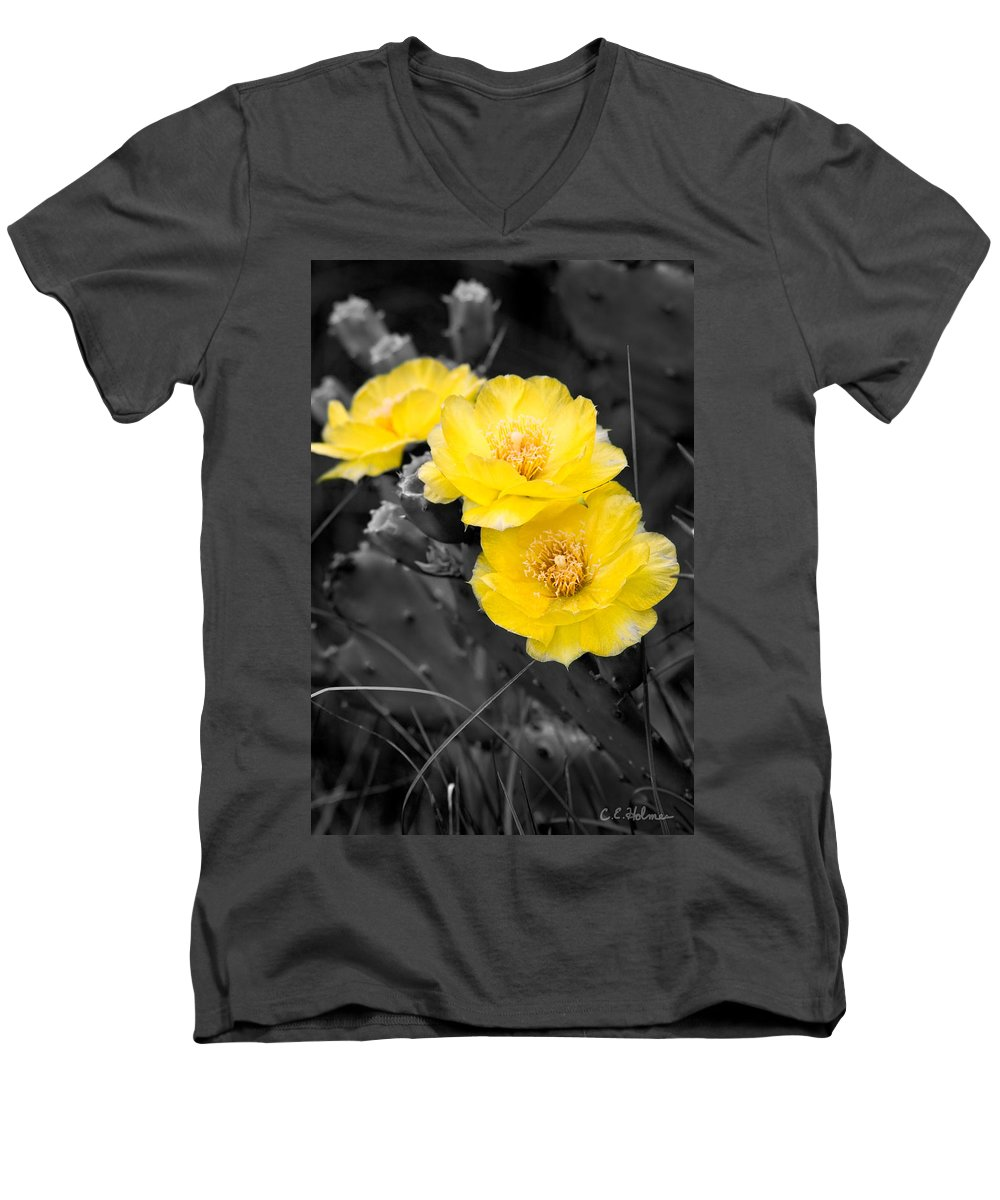 Cactus Men's V-Neck T-Shirt featuring the photograph Cactus Blossom by Christopher Holmes