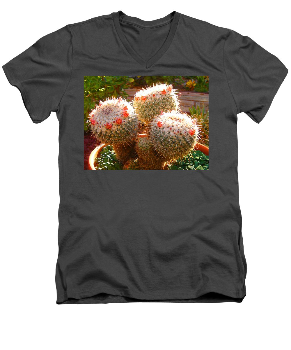 Landscape Men's V-Neck T-Shirt featuring the photograph Cactus Buds by Amy Vangsgard