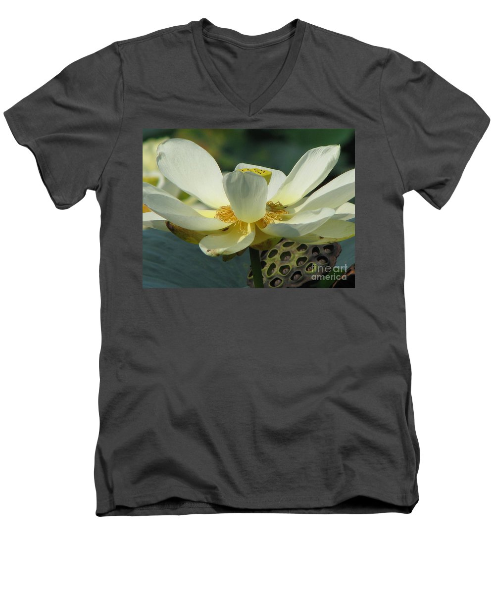 Lotus Men's V-Neck T-Shirt featuring the photograph Calm by Amanda Barcon