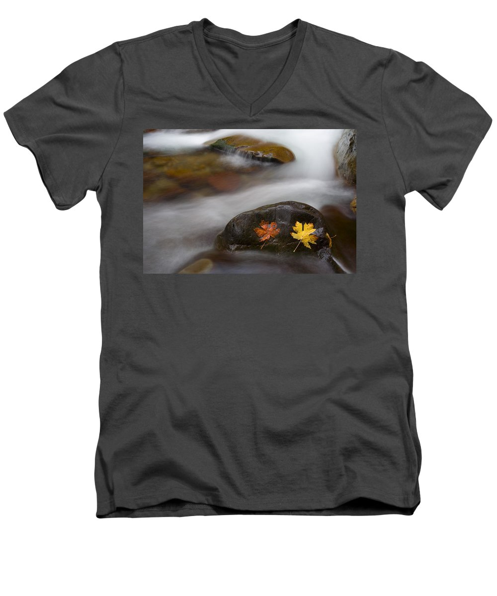 Leaves Men's V-Neck T-Shirt featuring the photograph Castaways by Mike Dawson