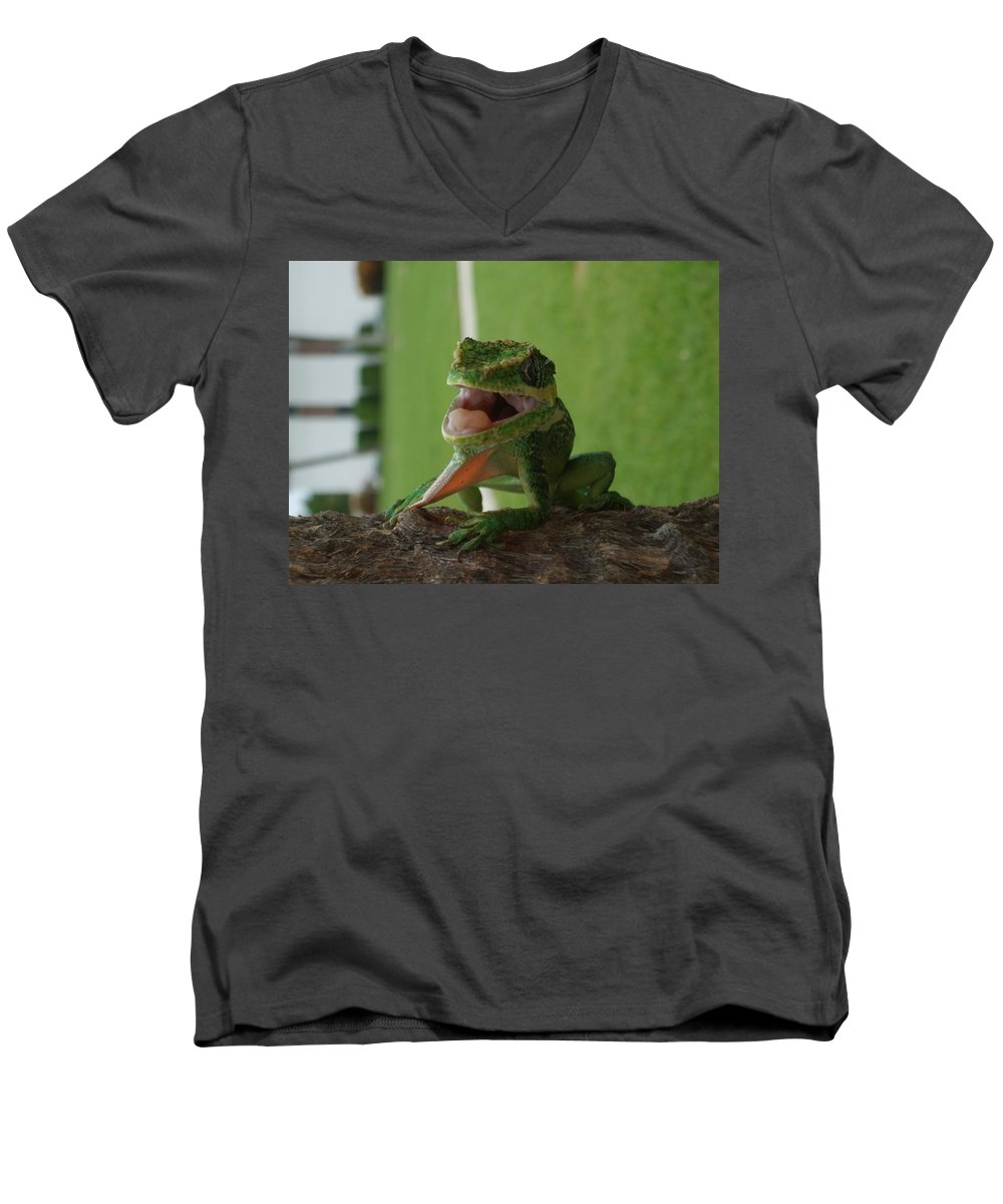 Iguana Men's V-Neck T-Shirt featuring the photograph Chilling On Wood by Rob Hans