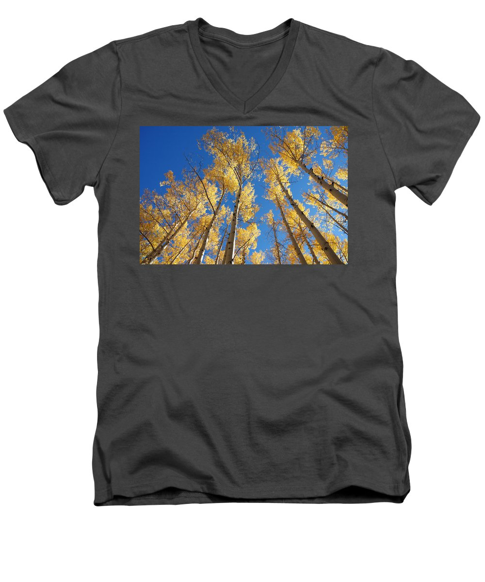 Aspen Men's V-Neck T-Shirt featuring the photograph Colorado Aspen by Jerry McElroy