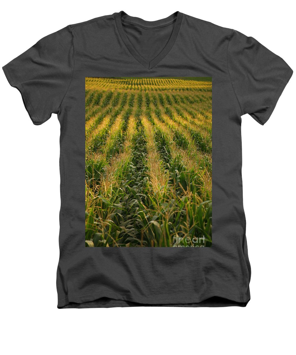 Acores Men's V-Neck T-Shirt featuring the photograph Corn Field by Gaspar Avila
