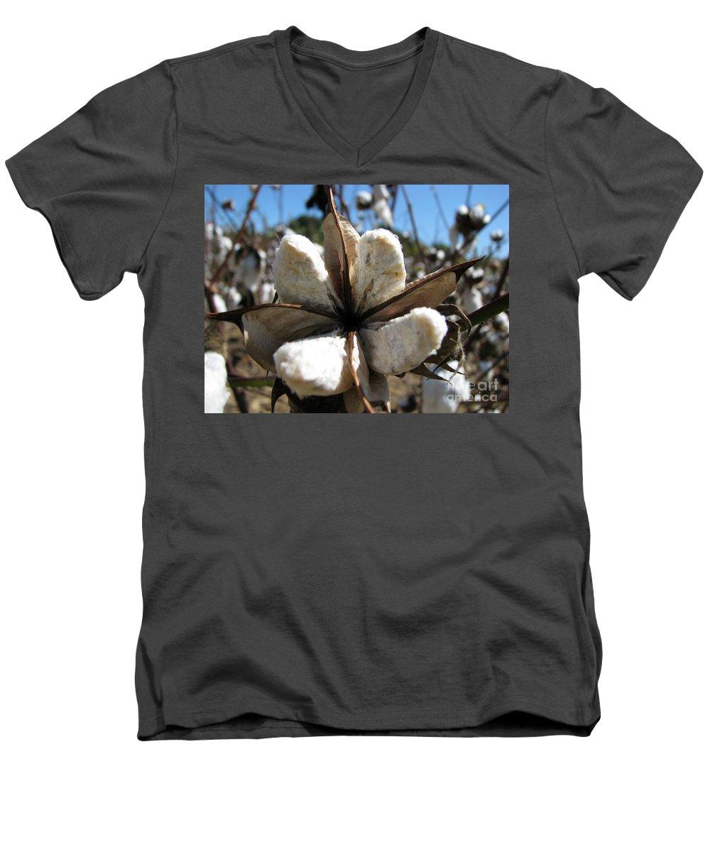 Cotton Men's V-Neck T-Shirt featuring the photograph Cotton by Amanda Barcon