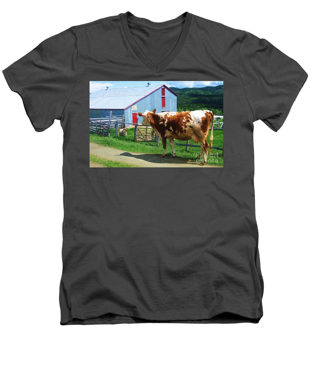 Photograph Cow Sheep Barn Field Newfoundland Men's V-Neck T-Shirt featuring the photograph Cow Sheep And Bicycle by Seon-Jeong Kim