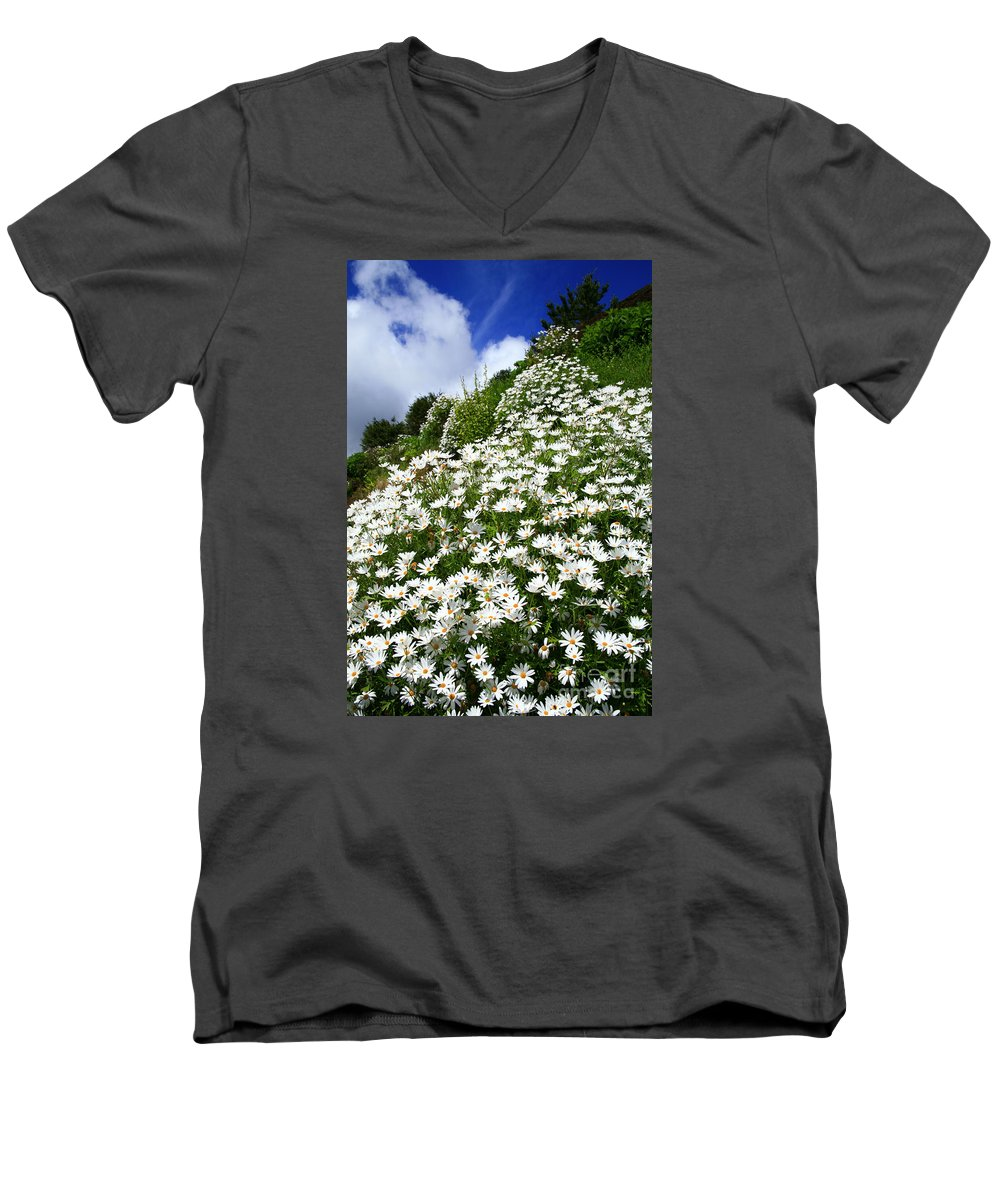 Countryside Men's V-Neck T-Shirt featuring the photograph Daisies by Gaspar Avila