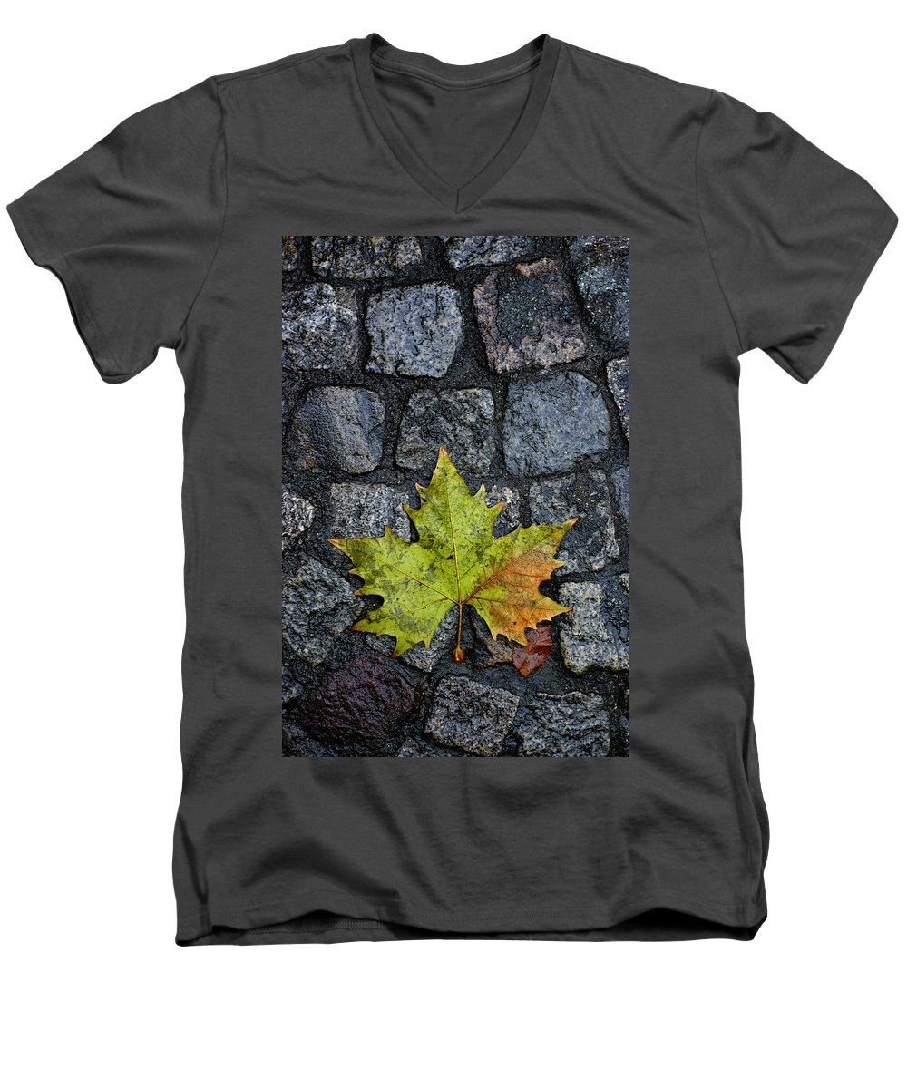 Nature Men's V-Neck T-Shirt featuring the photograph Deville by Skip Hunt