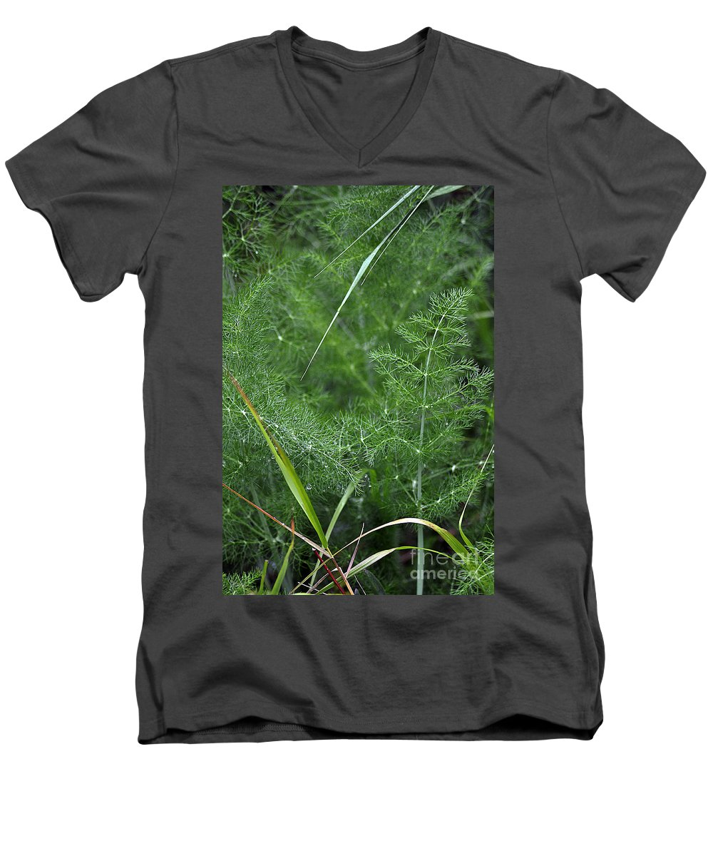 Clay Men's V-Neck T-Shirt featuring the photograph Dew On The Ferns by Clayton Bruster