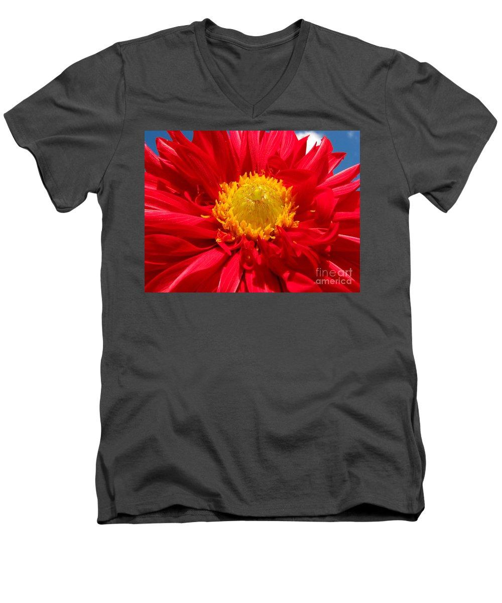 Dhalia Men's V-Neck T-Shirt featuring the photograph Dhalia by Amanda Barcon