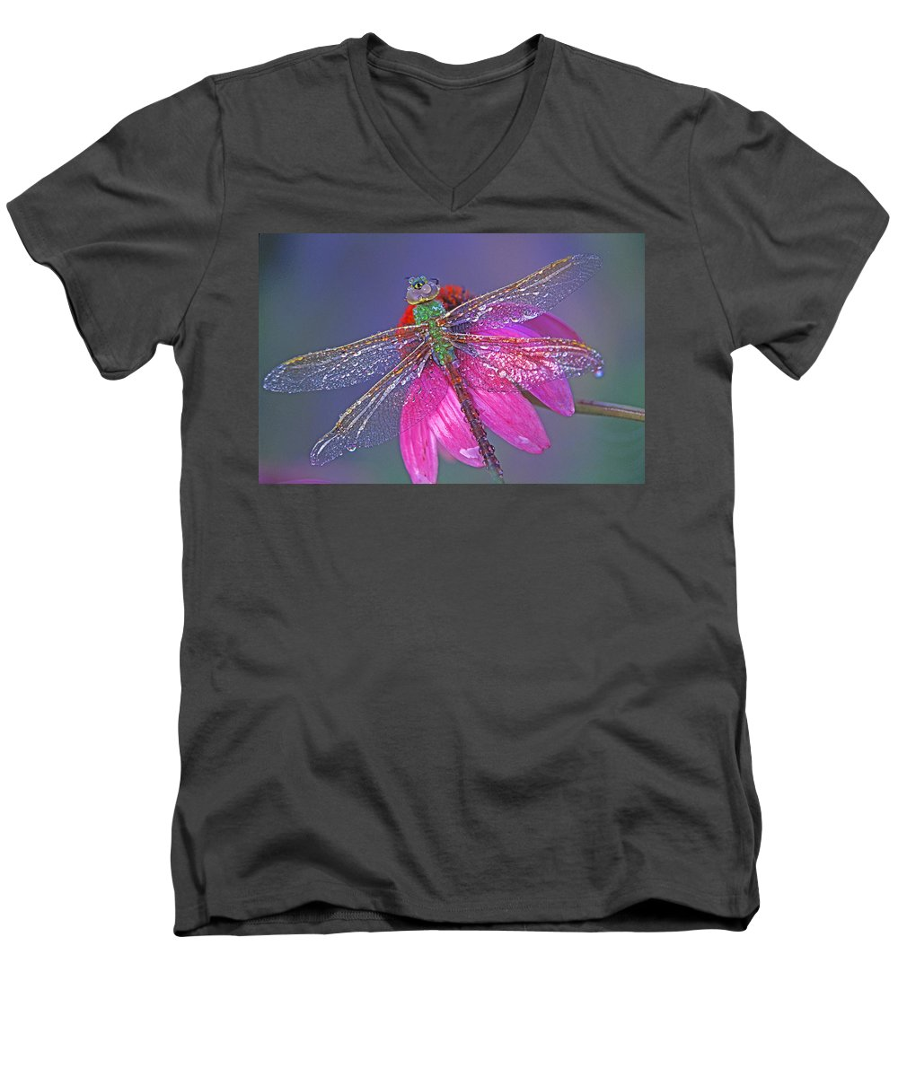 Dew Covered Dragonfly Rests On Purple Cone Flower Men's V-Neck T-Shirt featuring the photograph Dreaming Dragon by Bill Morgenstern