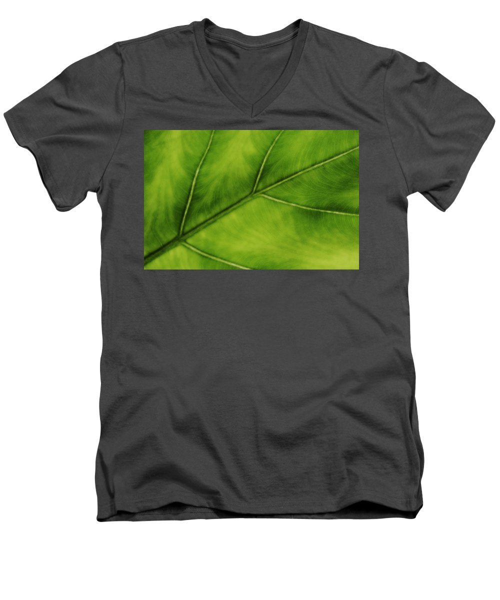 Leaf Men's V-Neck T-Shirt featuring the photograph Elephant Ear by Marilyn Hunt