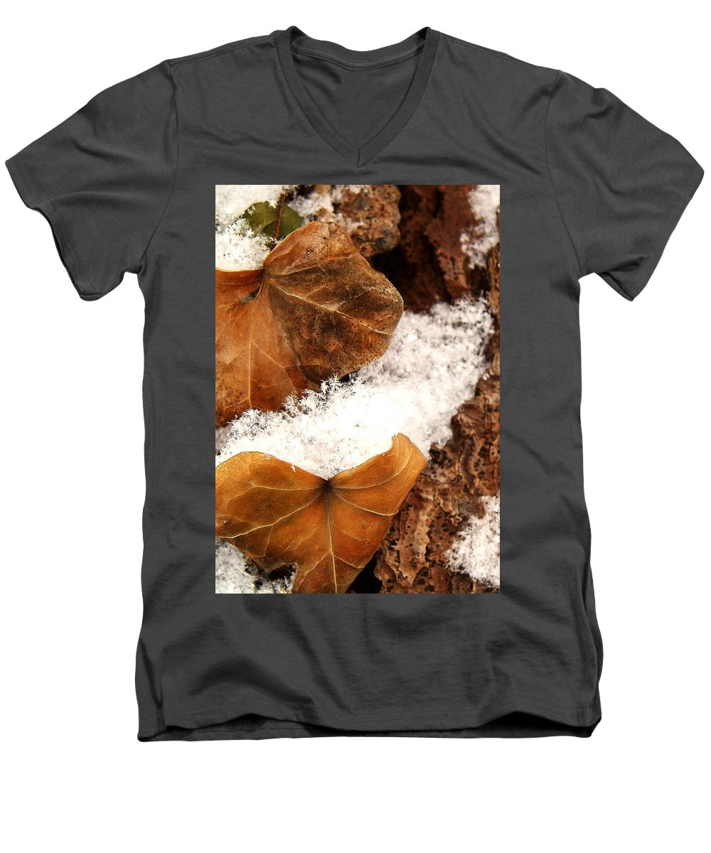 Fall Men's V-Neck T-Shirt featuring the photograph Fall And Winter by Gaby Swanson