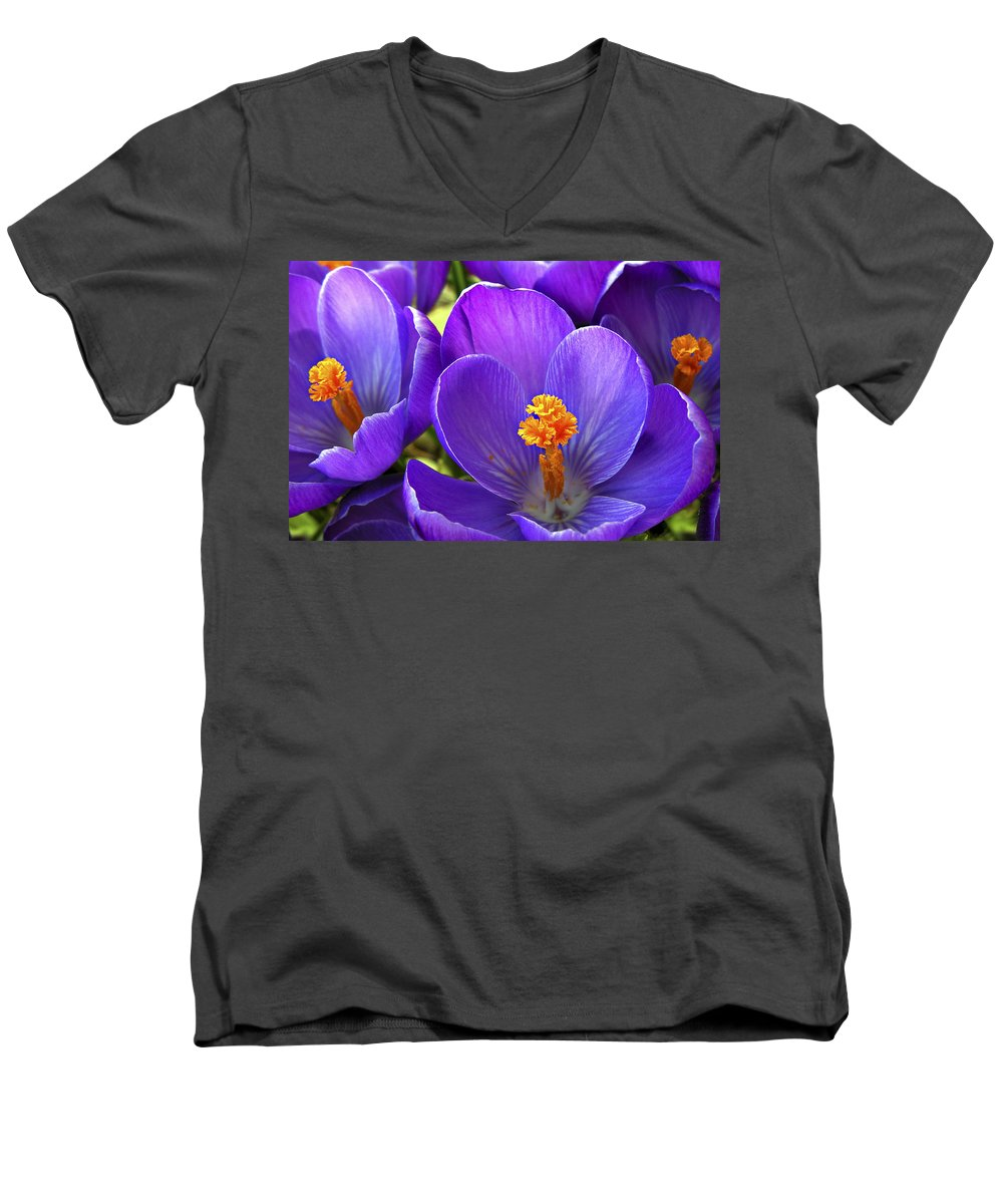 Flower Men's V-Neck T-Shirt featuring the photograph First Crocus by Marilyn Hunt