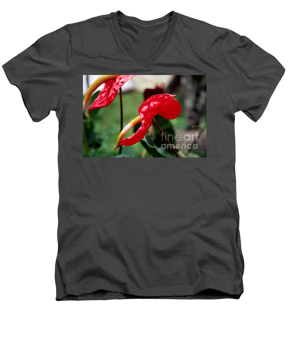 Exotic Flowers Men's V-Neck T-Shirt featuring the photograph Flamingo Flower by Kathy McClure