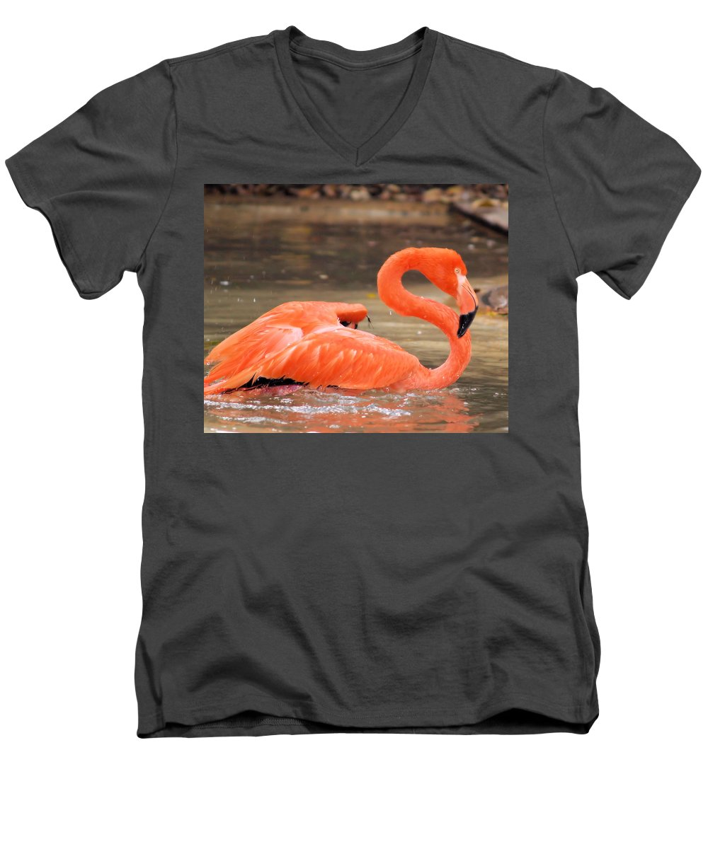 Flamingo Men's V-Neck T-Shirt featuring the photograph Flamingo by Gaby Swanson