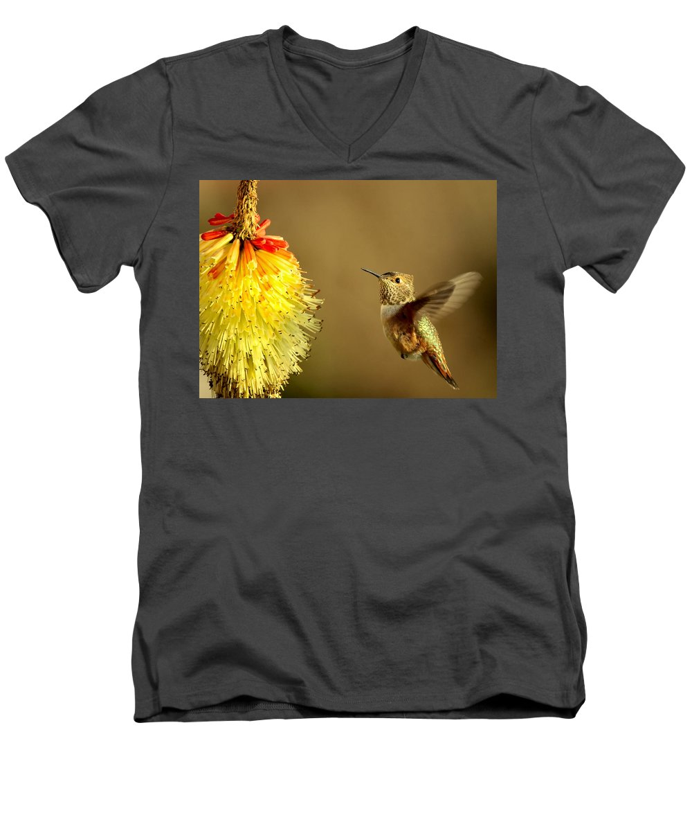 Hummingbird Men's V-Neck T-Shirt featuring the photograph Flight Of The Hummer by Mike Dawson