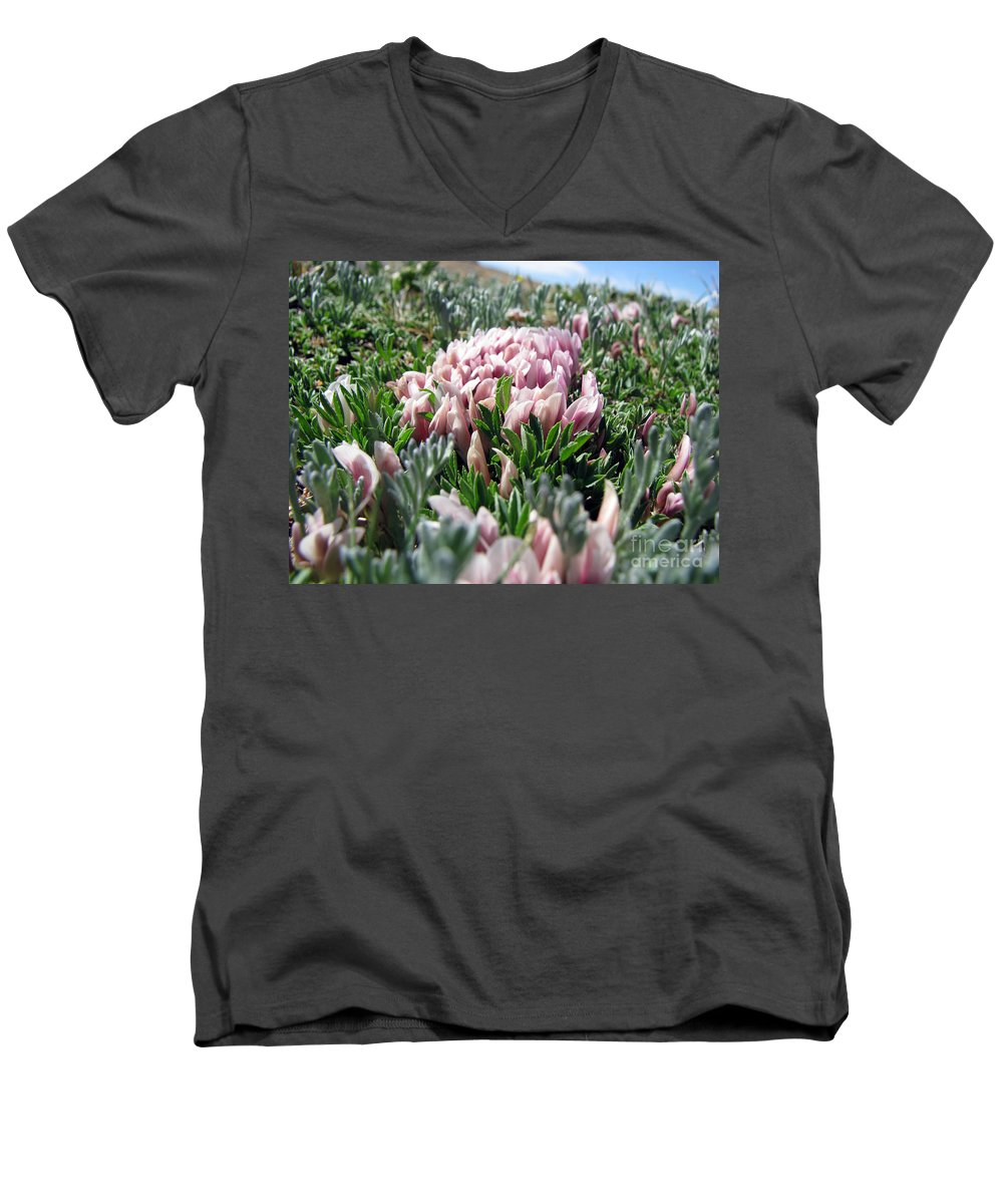 Flowers Men's V-Neck T-Shirt featuring the photograph Flowers In The Alpine Tundra by Amanda Barcon