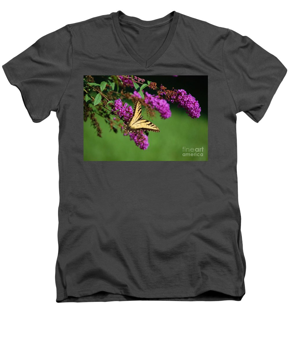 Butterfly Men's V-Neck T-Shirt featuring the photograph Freedom by Debbi Granruth