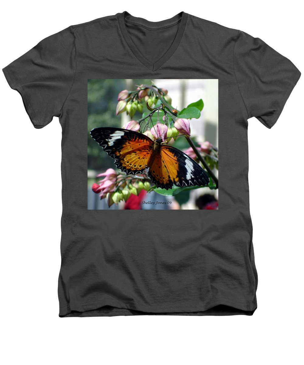 Photography Men's V-Neck T-Shirt featuring the photograph Friends Come In Small Packages by Shelley Jones