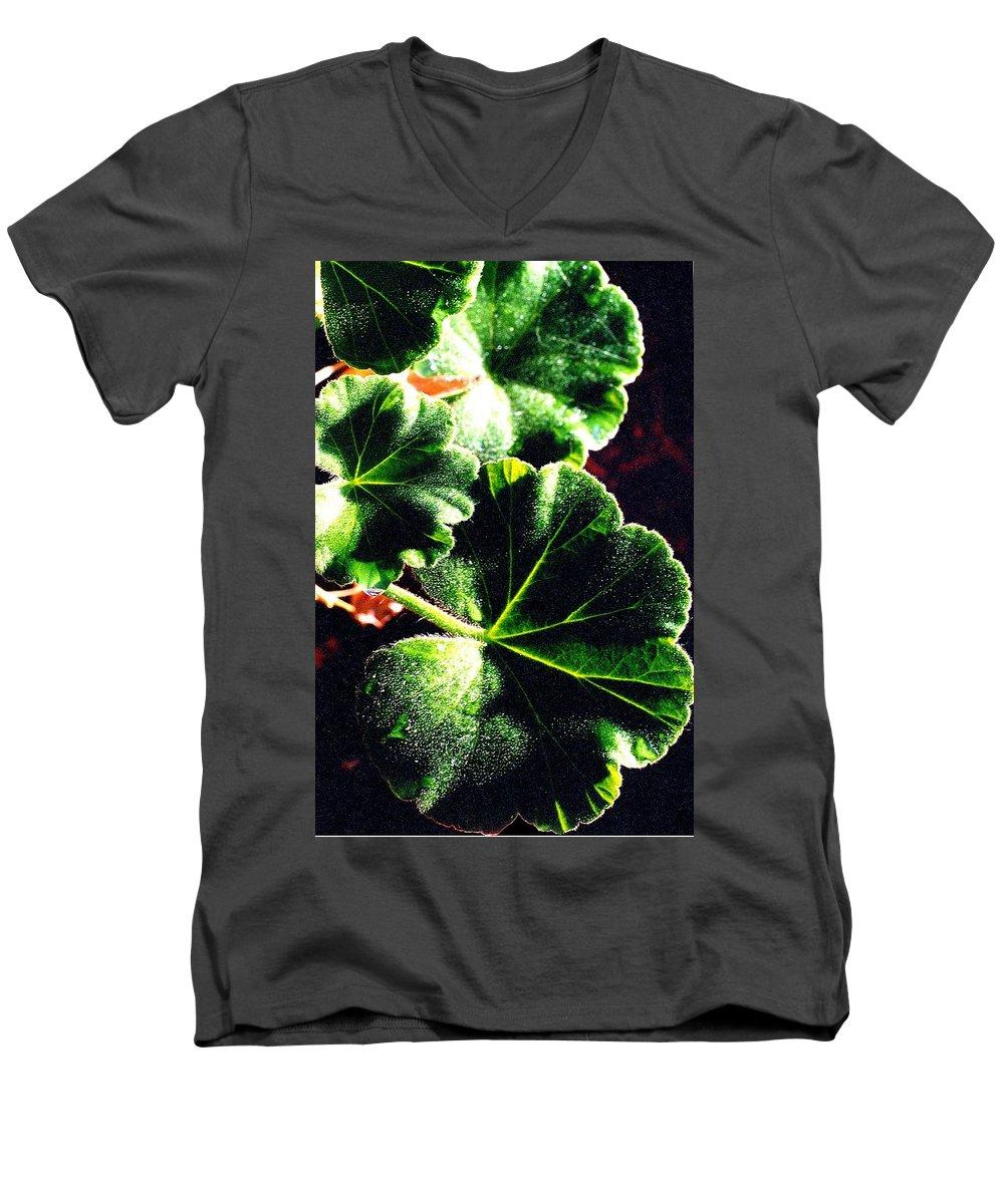 Geraniums Men's V-Neck T-Shirt featuring the photograph Geranium Leaves by Nancy Mueller