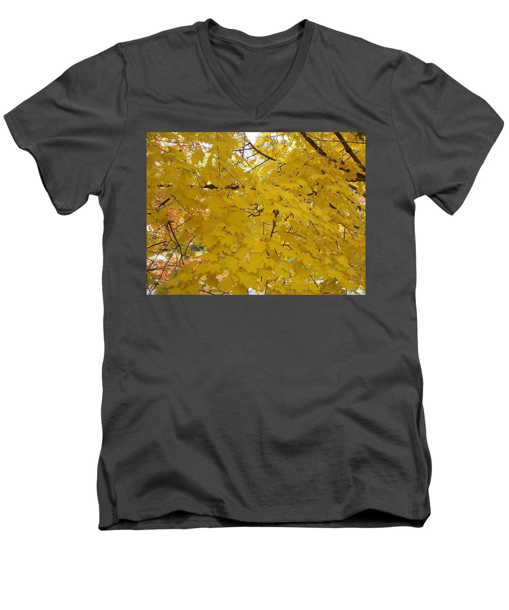 Fall Autum Trees Maple Yellow Men's V-Neck T-Shirt featuring the photograph Golden Canopy by Karin Dawn Kelshall- Best