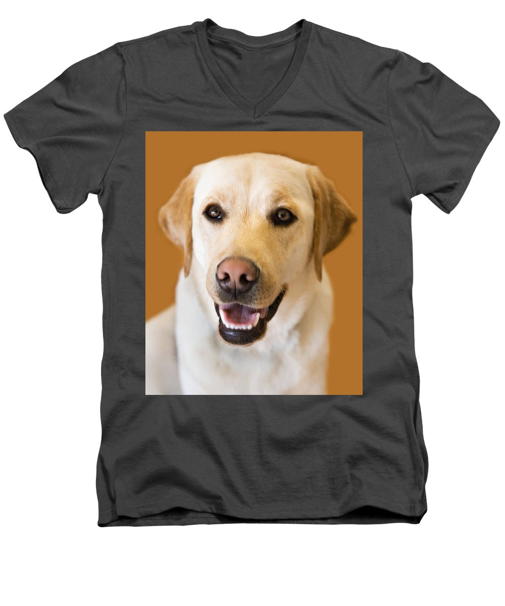 Lab Men's V-Neck T-Shirt featuring the photograph Golden Lab by Marilyn Hunt