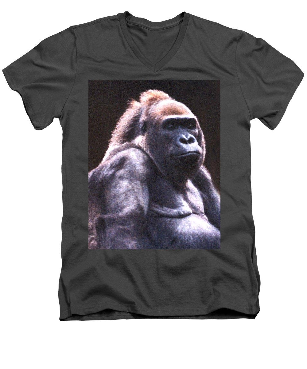 Gorilla Men's V-Neck T-Shirt featuring the photograph Gorilla by Steve Karol