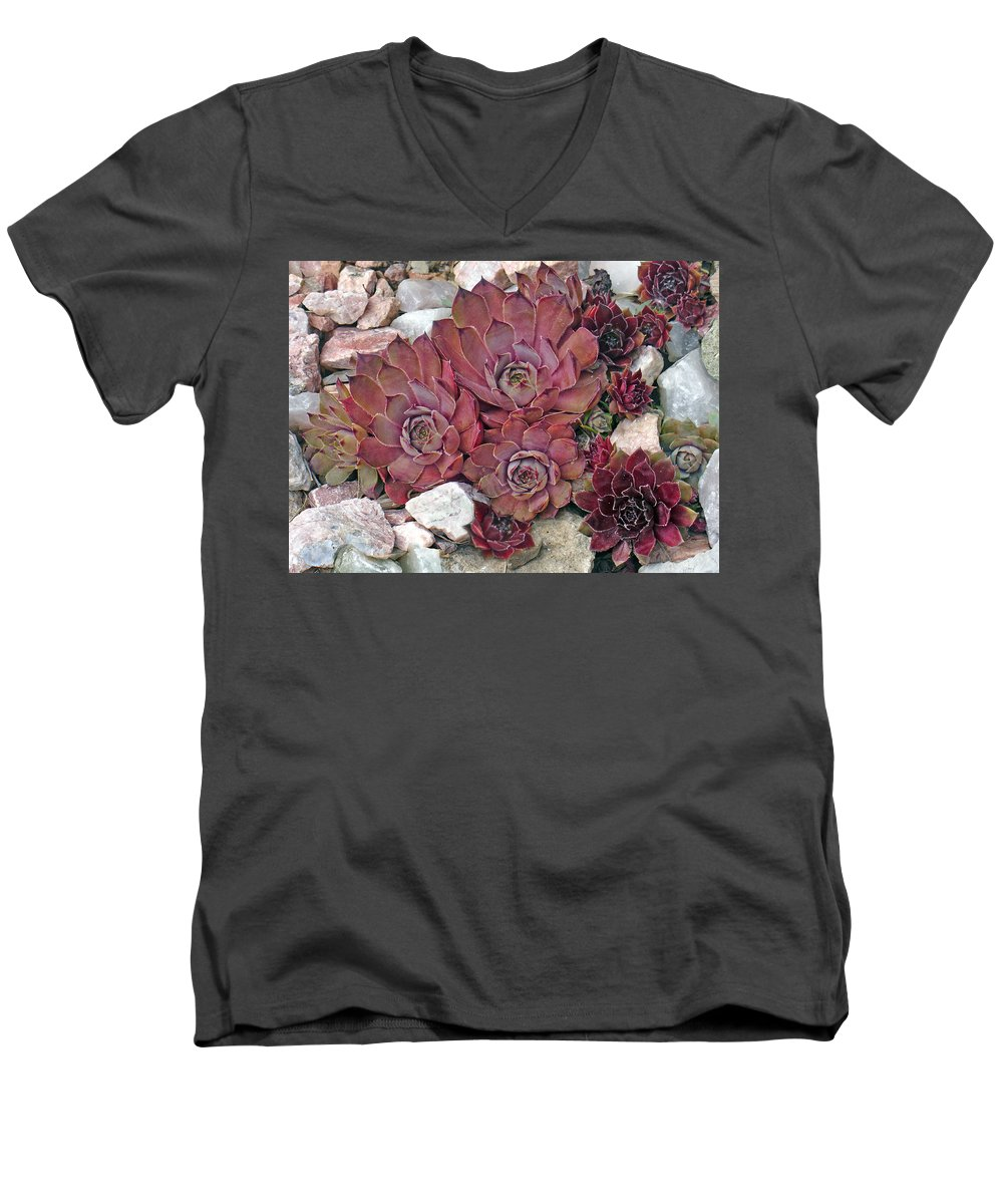 Landscape Men's V-Neck T-Shirt featuring the photograph Hens And Chickens by Steve Karol
