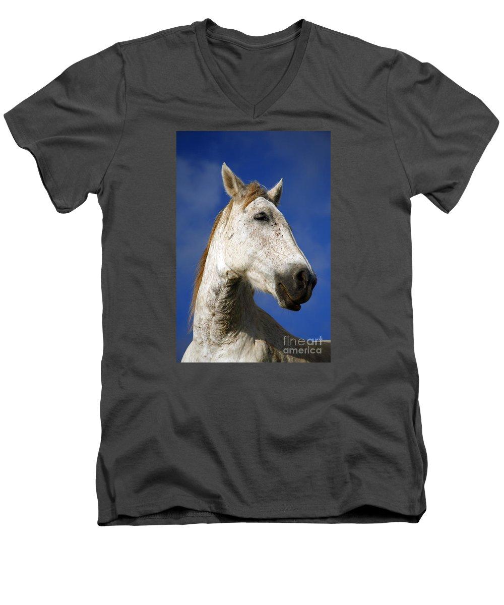 Animals Men's V-Neck T-Shirt featuring the photograph Horse Portrait by Gaspar Avila