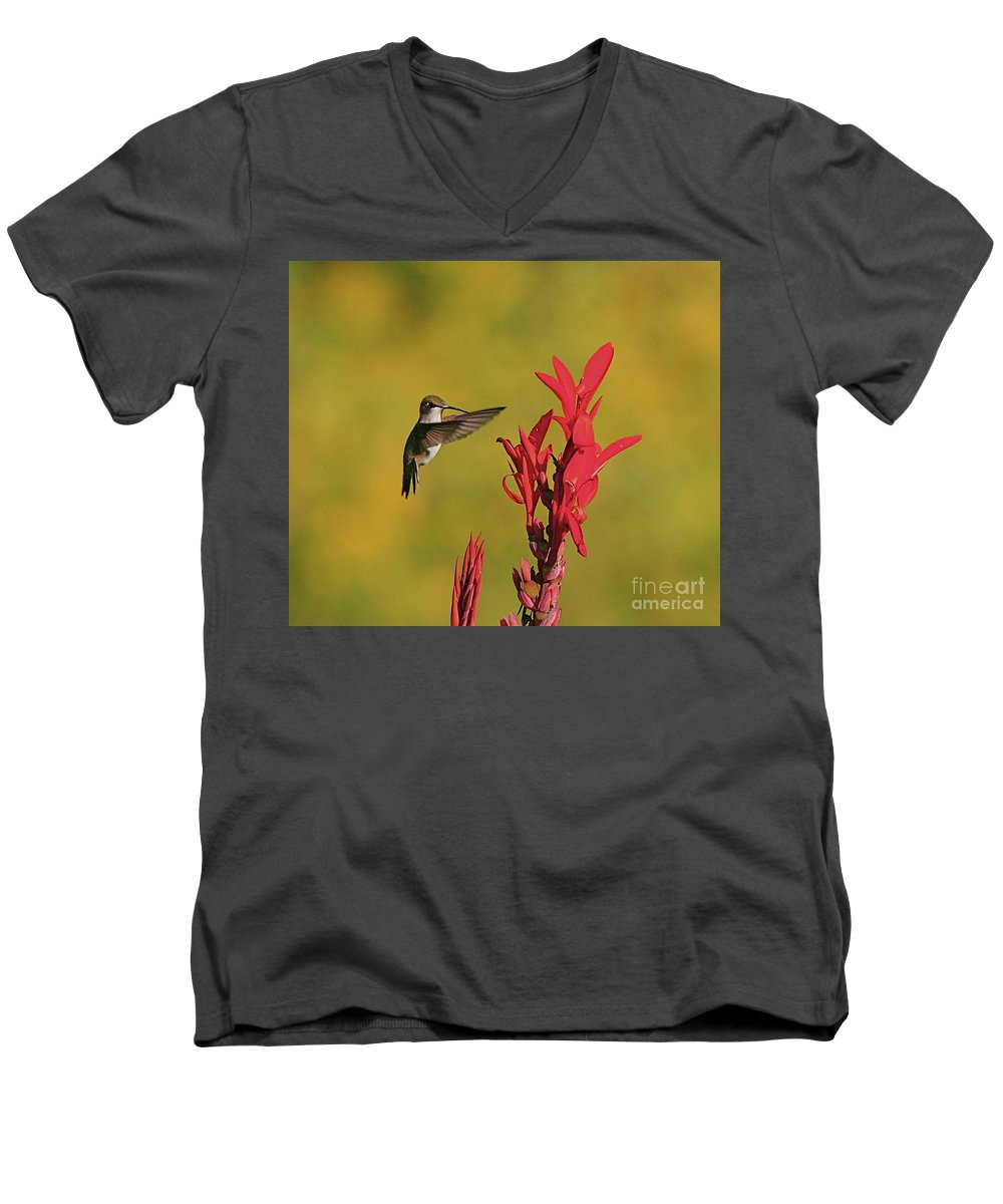Humming Bird Men's V-Neck T-Shirt featuring the photograph Hummer by Robert Pearson