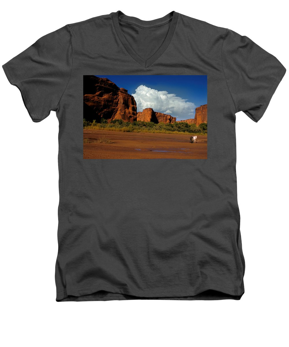 Horses Men's V-Neck T-Shirt featuring the photograph Indian Ponies In The Canyon by Jerry McElroy